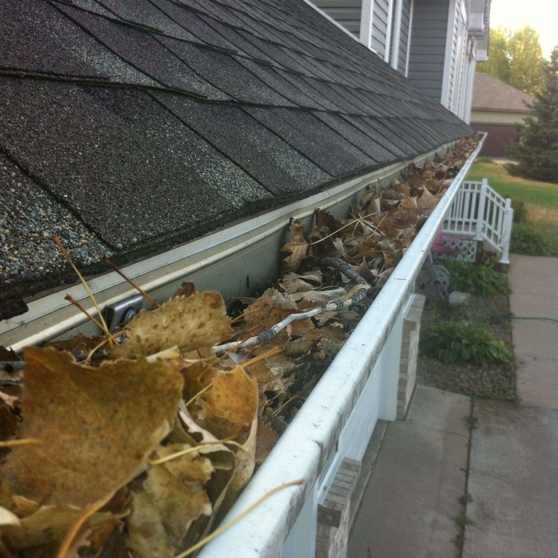 5 Reasons to Hire Professionals to Clean Your Gutters!