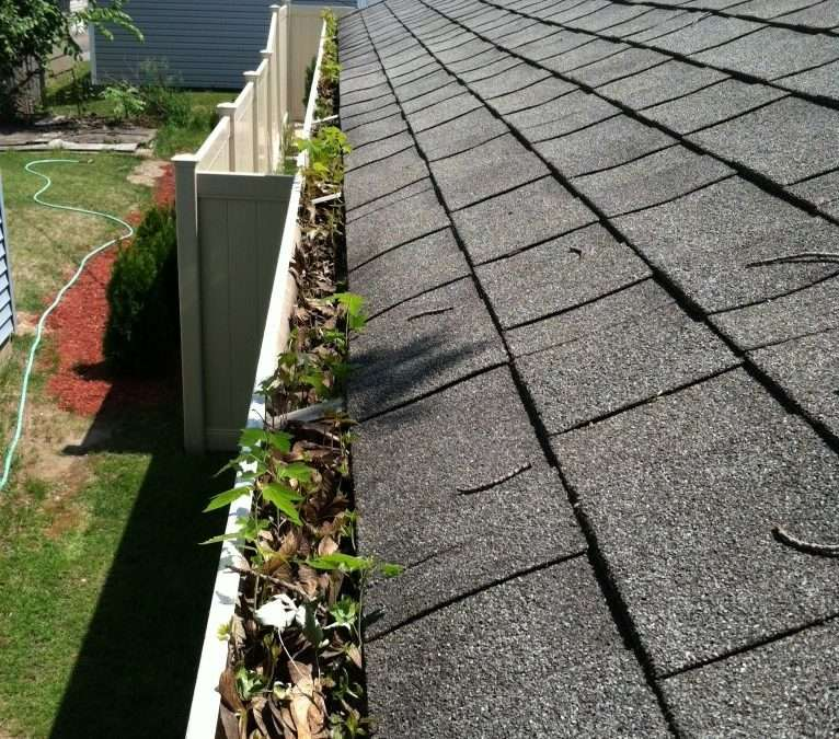 Are Your Gutters Getting the Attention They Need?