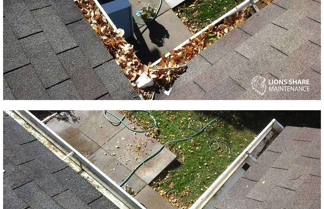 Are You Looking for Professional Gutter Cleaners?