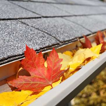 St. Paul and Minneapolis MN gutter cleaning services