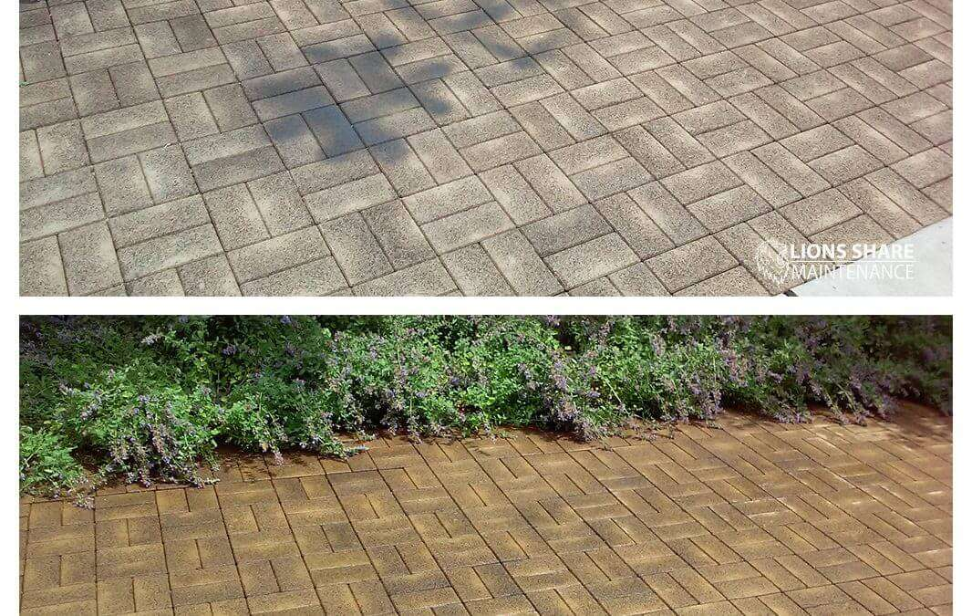 How Do You Start Looking For A Powerwash Company?