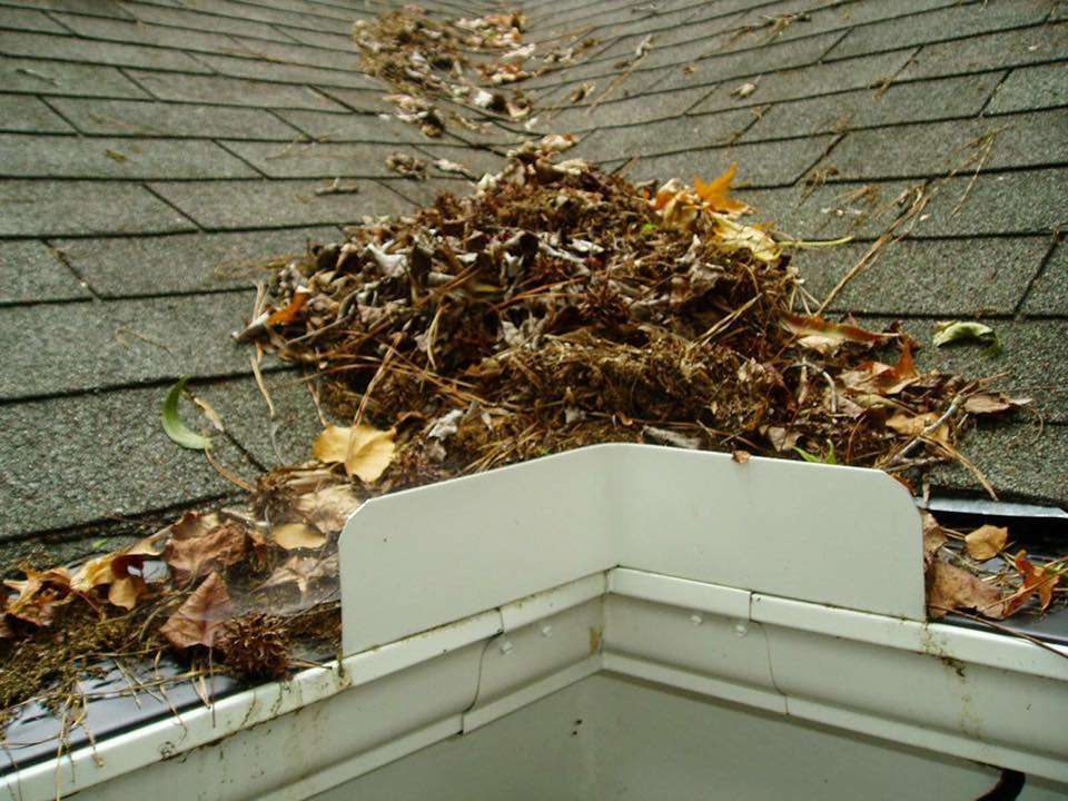 Let the Professionals Take Care of Your Dirty and Blocked Gutters